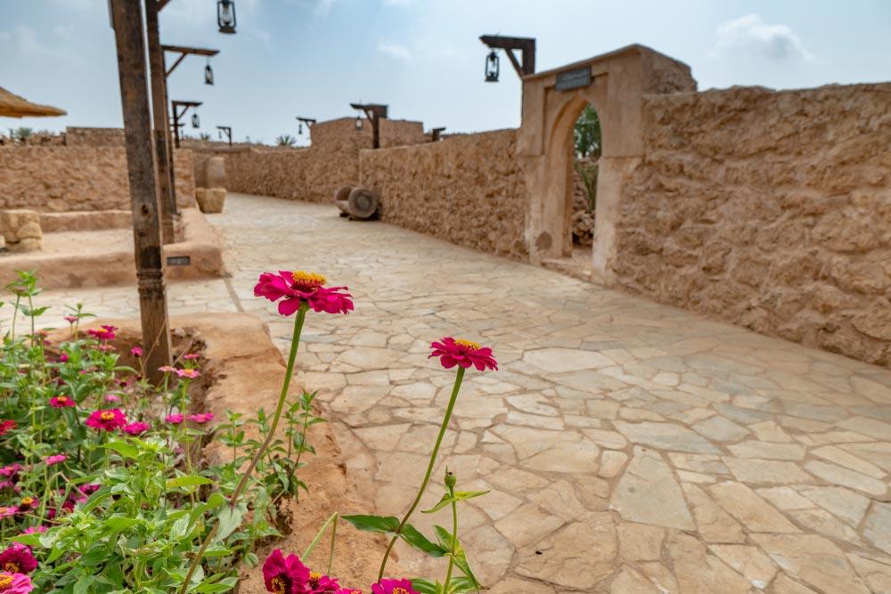 أجمل فنادق جزيرة فرسان السياحة في جزيرة فرسان رحال مدونة سفر من ويجو